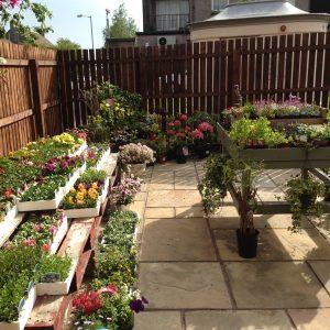 Branch Out Garden Centre
