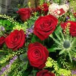 Valentine's Day - Highland Romance